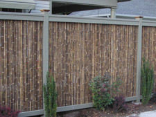 Huckleberry Bamboo Fence